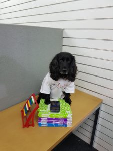 Dog with maths books